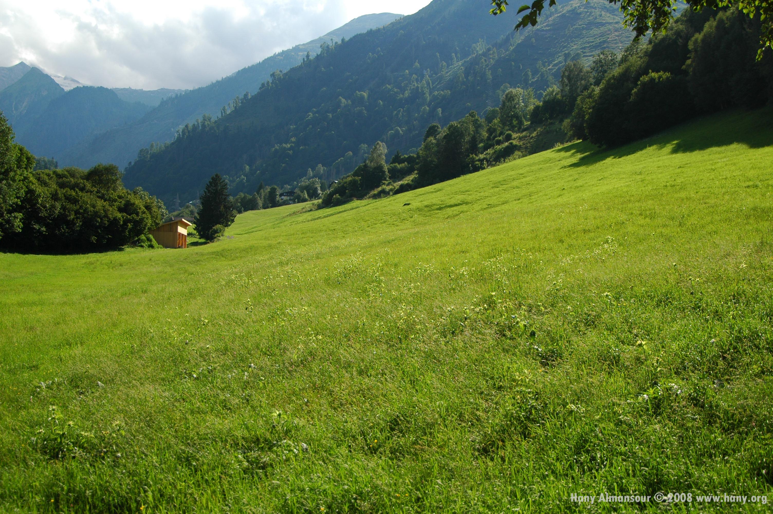 Hany_Landscape.jpg